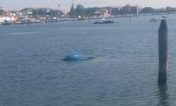 Barca_Che_Affonda_3